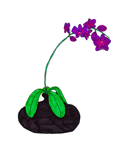 7d7c5bfe53a Purple Orchid Fan Request – i use markers